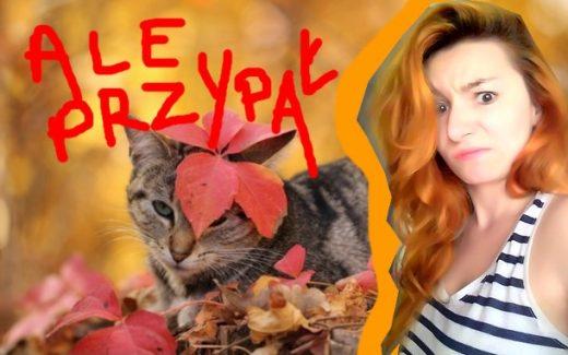 5097-jesienia-koty-sie-nie-nudza-oj-nie