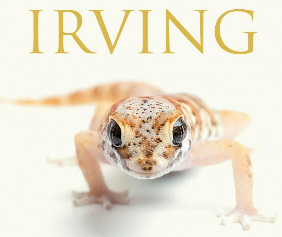 John Irving – Aleja tajemnic